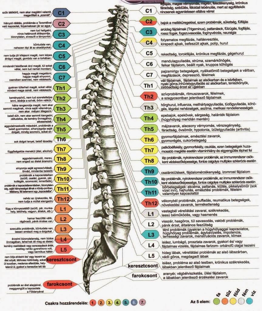 háti csigolyák a karok és a lábak ízületeinek ízületi kezelése